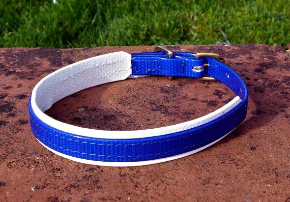 Medium Translucent Dark Blue Dog Collar With BETA® White Underlay-0
