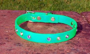 Extra Small BETA® Light Green Dog Collar With Purple and White Rhinestones-0