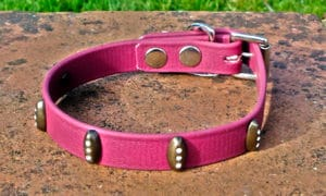 Small BETA® Wine Dog Collar With Trinity Rivets-0