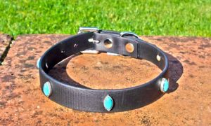 Medium BETA® Black Dog Collar With Dragons Eye Rivets-0