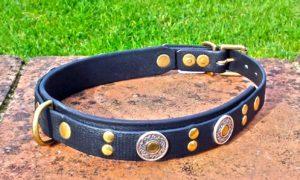 Large BETA® Black Dog Collar With BETA® Black Underlay, Florentine Conchos and Rivets-0
