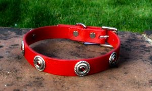 Small BETA® Red Dog Collar With Rope Concho and Red Rhinestone Insets-0