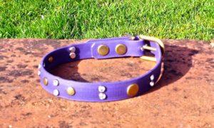 Medium BETA® Purple Dog Collar With Rivets and Clear Rhinestones-0