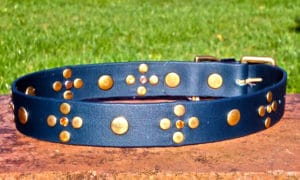 Large BETA® Dark Green Dog Collar With Amber Rhinestones and Rivets-0