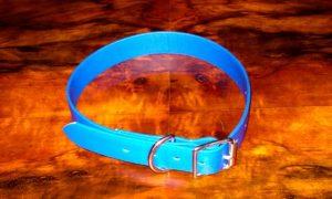 Extra Small BETA® Blue Dog Collar-0