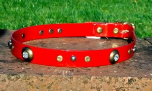 Large BETA® Red Dog Collar With Spotlight Rivets and Domed Rivets-0