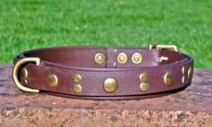Large BETA® Brown Dog Collar With BETA® Brown Underlay, Rivets-0