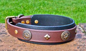 Large BETA® Brown Dog Collar With BETA® Black Underlay, Navajo Conchos and Keystones-0