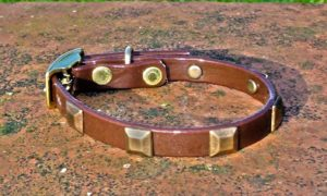 Extra Small BETA® Dark Brown Dog Collar With Square Conchos-0