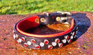 Small BETA® Black Dog Collar With BETA® Red Underlay, Red and White Rhinestones-0