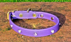 Extra Small BETA® Purple Dog Collar With Clear Rhinestones-0