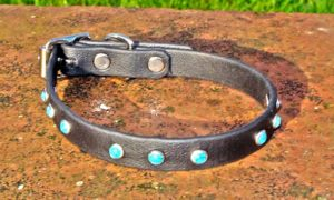 Small BETA® Black Dog Collar With Small Turquoise Rivets-0
