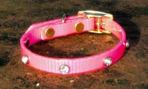 Extra Small Translucent Pink Dog Collar With White Rhinestones-0