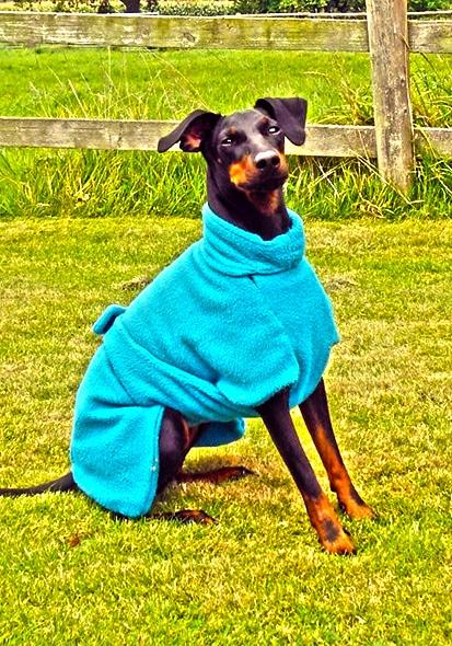 Manchester Terrier Fleece Coats-624