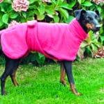 Manchester Terrier Fleece Coats-627