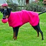 Manchester Terrier Fleece Coats-626