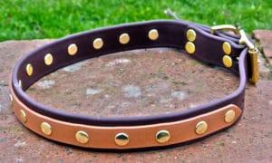 Large BETA® Brown Dog Collar with Tan Overlay-0