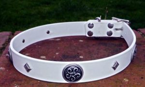 Large BETA® White Dog Collar With Antique Silver Celtic Conchos-0