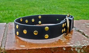 Ready Made Extra Wide Dog Collars