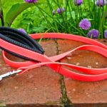 Padded Dog Lead-1224