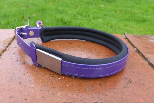 Agility Dog Collar-1346