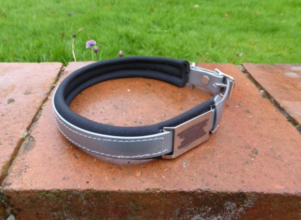 Agility Dog Collar-1350
