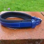Agility Dog Collar-1352