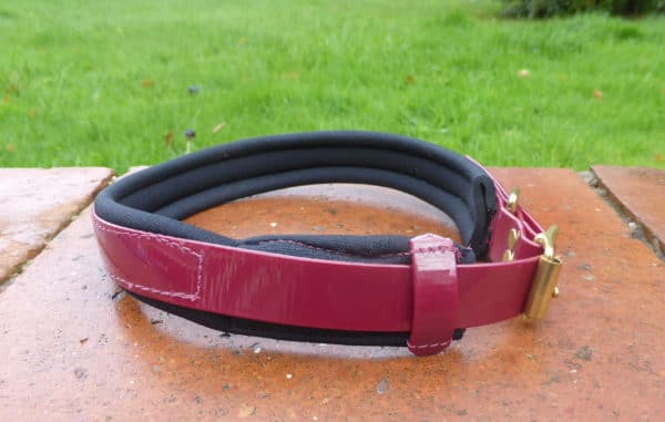 Agility Dog Collar-1351