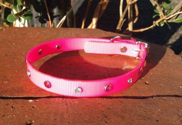 Bling Dog Collar-1515