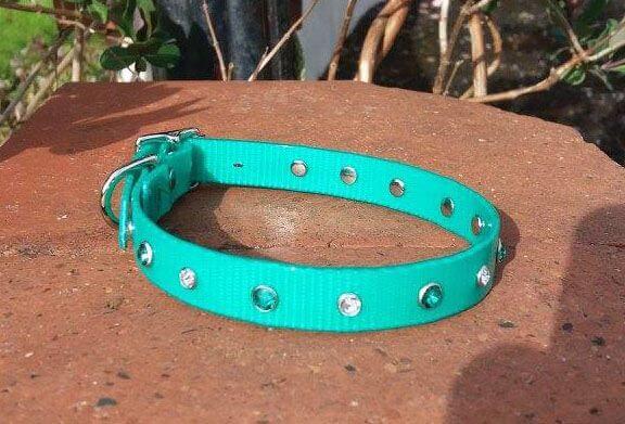 Bling Dog Collar-1516