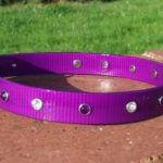 Bling Dog Collar-1520